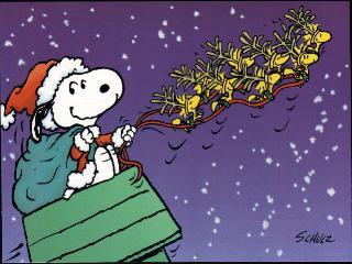 Snoopy Sleigh